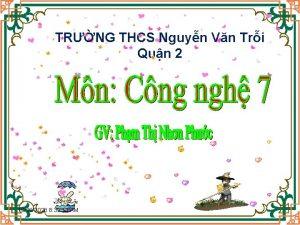 TRNG THCS Nguyn Vn Tri Qun 2 10262020