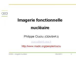 Imagerie fonctionnelle nuclaire Philippe Ciuciu CEASHFJ ciuciushfj cea