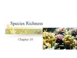 Species Richness Chapter 10 Species Richness n n