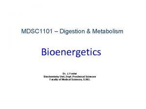 MDSC 1101 Digestion Metabolism Bioenergetics Dr J Foster