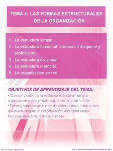 TEMA 4 LAS FORMAS ESTRUCTURALES DE LA ORGANIZACIN