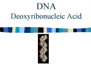 DNA Deoxyribonucleic Acid DNA Structure What is DNA