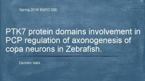 Spring 2016 BNFO 300 PTK 7 protein domains