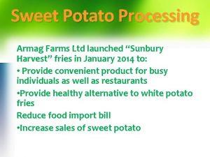 Sweet Potato Processing Armag Farms Ltd launched Sunbury