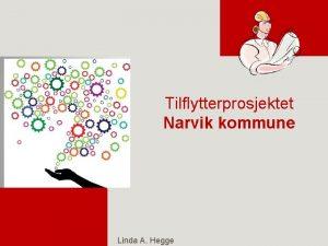 Tilflytterprosjektet Narvik kommune Linda A Hegge Veien blir