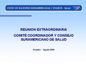 REUNION EXTRAORDINARIA COMIT COORDINADOR Y CONSEJO SURAMERICANO DE