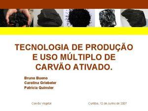 TECNOLOGIA DE PRODUO E USO MLTIPLO DE CARVO