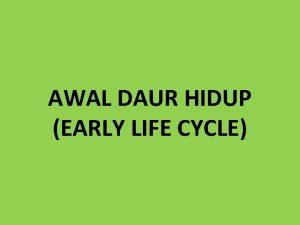 AWAL DAUR HIDUP EARLY LIFE CYCLE DAUR HIDUP