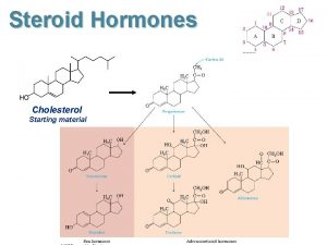 Steroid Hormones Cholesterol Starting material Steroid Sex Hormones