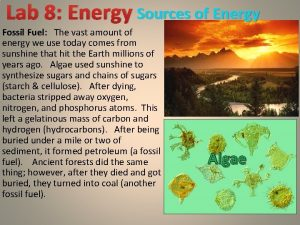 Lab 8 Energy Sources of Energy Fossil Fuel