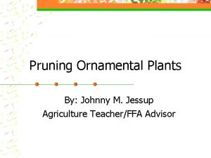 Pruning Ornamental Plants By Johnny M Jessup Agriculture