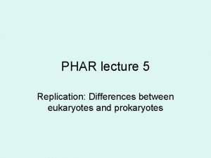 PHAR lecture 5 Replication Differences between eukaryotes and