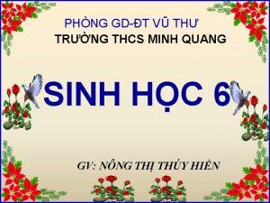 PHNG GDT V TH TRNG THCS MINH QUANG