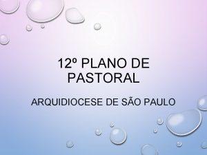 12 PLANO DE PASTORAL ARQUIDIOCESE DE SO PAULO