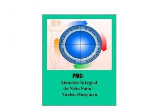 PMC Atencin Integral de Nio Sano Ncleo Huaytar