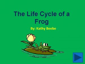 The Life Cycle of a Frog By Kathy
