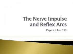 The Nerve Impulse and Reflex Arcs Pages 234