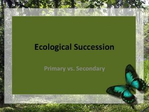 Ecological Succession Primary vs Secondary What is Succession
