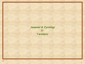 Anatomi Fysiologi IV Vvslre 1 Anatomi Fysiologi Lektion