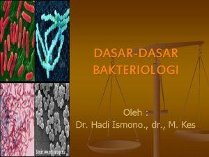 DASARDASAR BAKTERIOLOGI Oleh Dr Hadi Ismono dr M