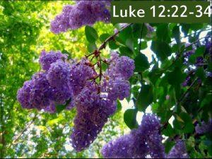 Luke 12 22 34 Luke 12 22 23