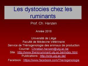 Les dystocies chez les ruminants Prof Ch Hanzen
