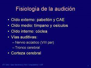 Fisiologa de la audicin Odo externo pabelln y
