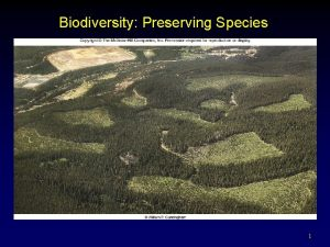 Biodiversity Preserving Species 1 Outline Biodiversity and the