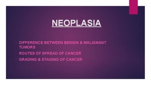 NEOPLASIA DIFFERENCE BETWEEN BENIGN MALIGNANT TUMORS ROUTES OF