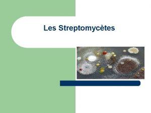 Les Streptomyctes INTRODUCTION l l Les Streptomyctes sont