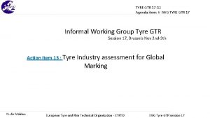 TYRE GTR 17 12 Agenda item 6 IWG