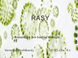 ASY Prezentace pro hodinu biologie Veronika Dvokov U