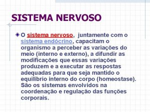 SISTEMA NERVOSO O sistema nervoso juntamente com o