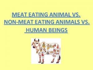 MEAT EATING ANIMAL VS NONMEAT EATING ANIMALS VS