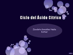 Ciclo del cido Ctrico Zavaleta Gonzlez Nadia Esther