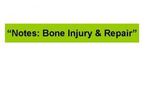 Notes Bone Injury Repair 1 Bone Injury Increased