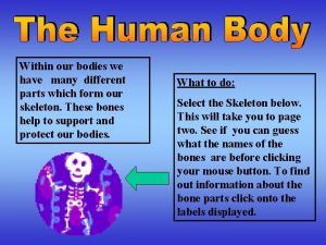 Within our bodies we have many different parts