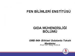 FEN BLMLER ENSTTS GIDA MHENDSL BLM GMB 649