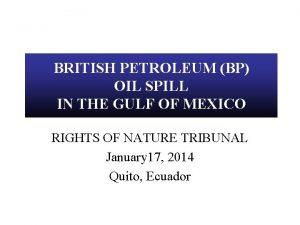 BRITISH PETROLEUM BP OIL SPILL IN THE GULF