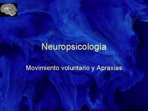 Neuropsicologa Movimiento voluntario y Apraxias Movimiento Manifestacin ltima