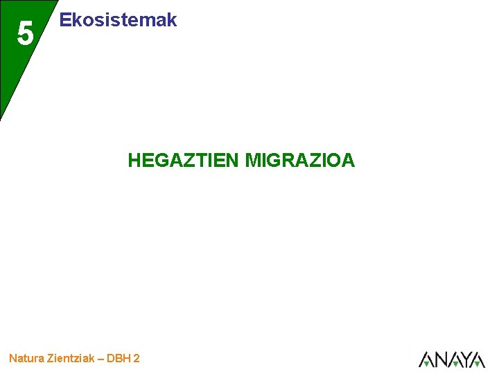 5 Ekosistemak HEGAZTIEN MIGRAZIOA Natura Zientziak DBH 2