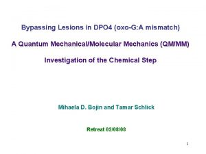 Bypassing Lesions in DPO 4 oxoG A mismatch