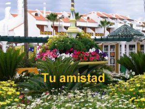 Tu amistad www vitanoblepowerpoints net www vitanoblepowerpoints net