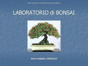 Istituto Comprensivo G Rodari di Santa Giustina Belluno