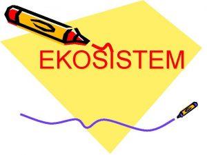EKOSISTEM Apa itu ekosistem Apa itu ekologi Ekosistem