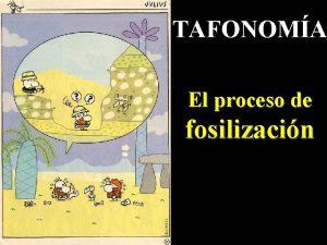 TAFONOMA El proceso de fosilizacin DEFINICION Estudio de
