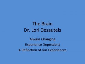 The Brain Dr Lori Desautels Always Changing Experience