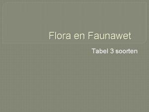 Flora en Faunawet Tabel 3 soorten 381 das