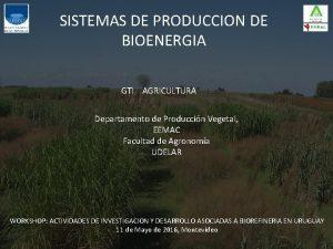 SISTEMAS DE PRODUCCION DE BIOENERGIA GTI AGRICULTURA Departamento