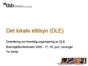Det lokale eltilsyn DLE Orientering om fremtidig organisering